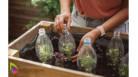JARDINAGE BIO - Créez votre Jardin Bio et développez de nouvelles habitudes saines - Formation en ligne - INTERNATIONAL OPEN ACA